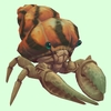 Ivory Hermit Crab w/ Orange Shell