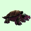 Brown & Magenta Dragon Turtle
