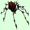 Red & Black Spider