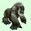 Dark Grey Gorilla