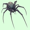 Purple-Grey Spider