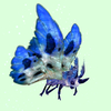 Indigo-Blue Moth w/ Blue & White Wings