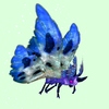 Purple Moth w/ Blue & White Wings