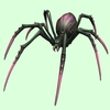 Dark Green & Pink Spider