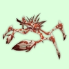 Mottled Red & White Spider Crab