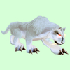 Hunched Albino Cat